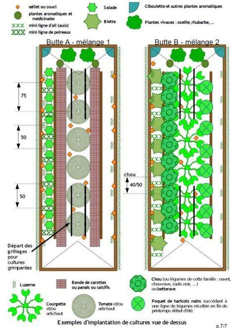 culture sur butte jardin pinterest exemple culture et potager. Black Bedroom Furniture Sets. Home Design Ideas