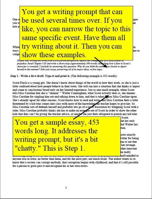 To Kill A Mockingbird Writing Assignment Economy Of Words 4 Pages Writing Assignments Writing Short Essay