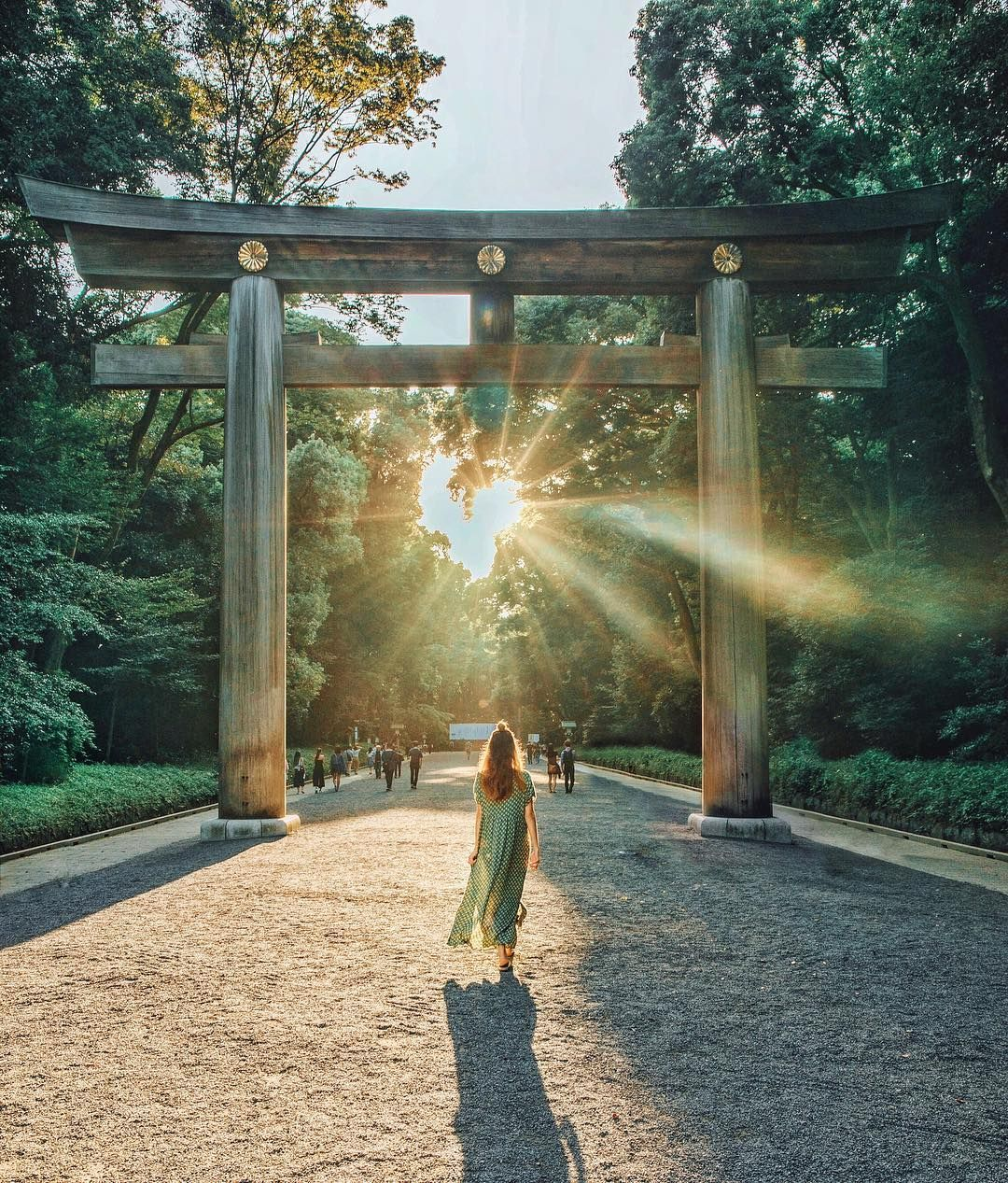 "Meiji shrine - Tara Milk Tea (@taramilktea) on Instagram: ""When ..."