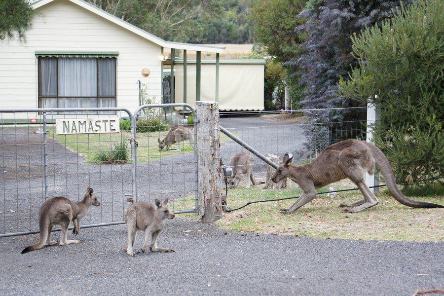 Roadtrip in Down Under Mit phthaloblau an Australiens