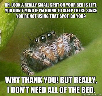 Misunderstood spider - Ah, look a really small spot on your bed is left. You don't mind if I'm going to sleep there, since you're not using that spot, do you? Why thank you! But really, I don't need ALL of the bed.