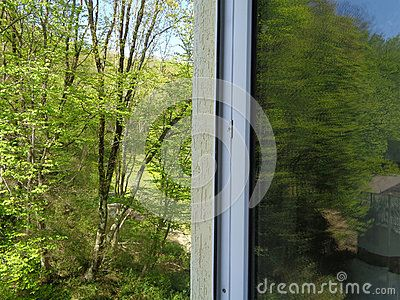green forest outside house window reflection trees in glass rh pinterest com