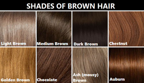 Shades Of Brown Hair Brown Hair Shades Brown Hair Color Chart Hair Color Chart