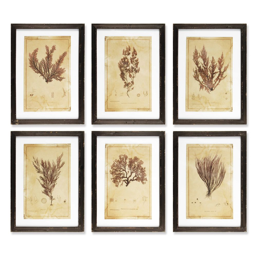 Napa Home and Garden Andros 6 Piece Framed Painting Print