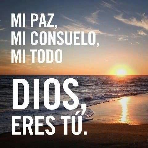 Juan 14:27 La paz os dejo, mi paz os doy; yo no os la doy como el mundo la da. No se turbe vuestro corazón, ni tenga miedo. ♔