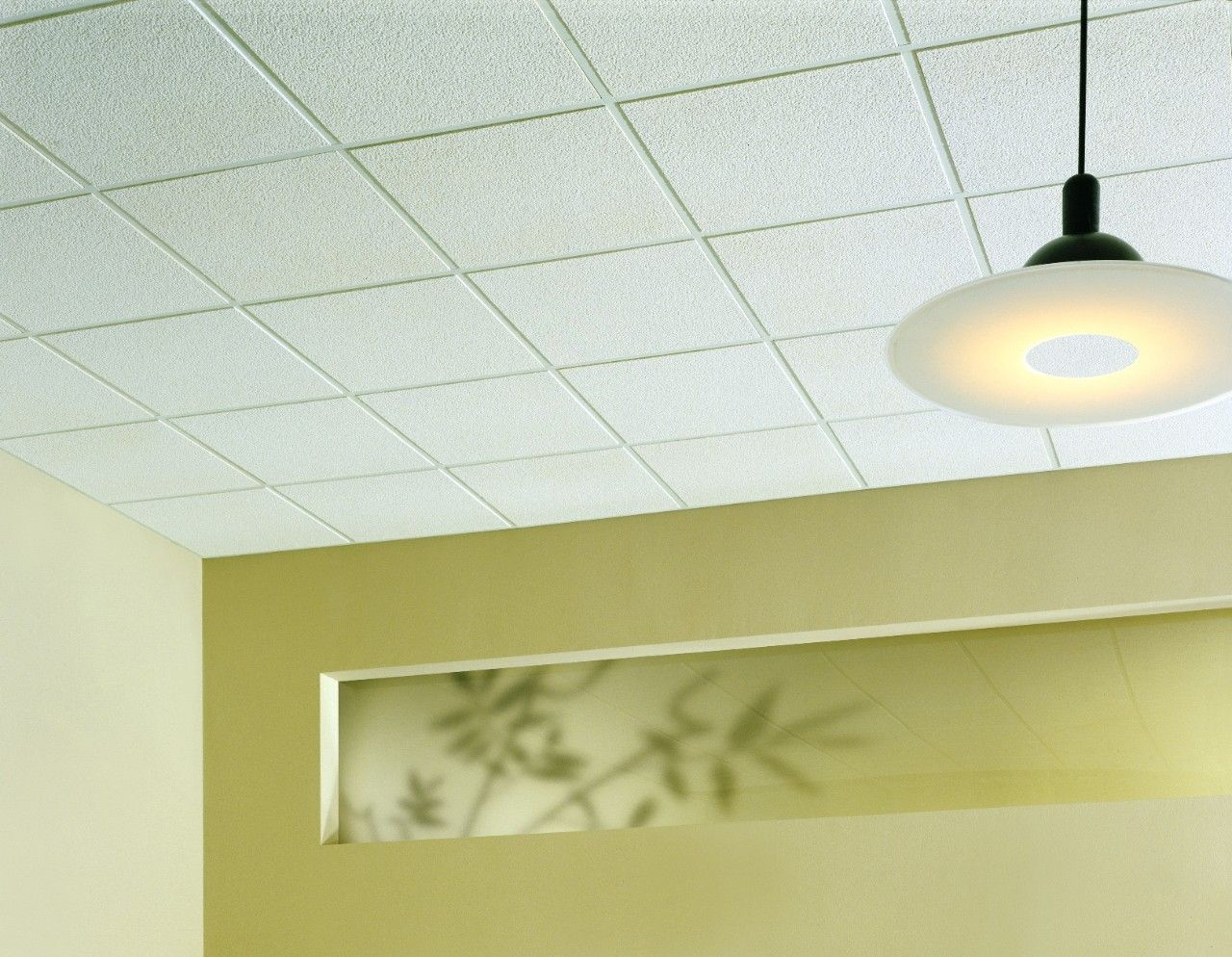 Cgc Alpine Ceiling Tile Httpcreativechairsandtables