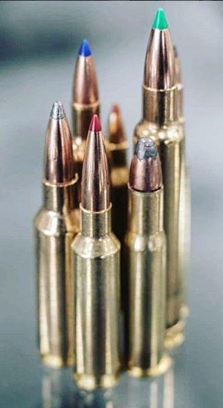 Best AR-15 Ammo for the Range & Home Defense | Guns | Home