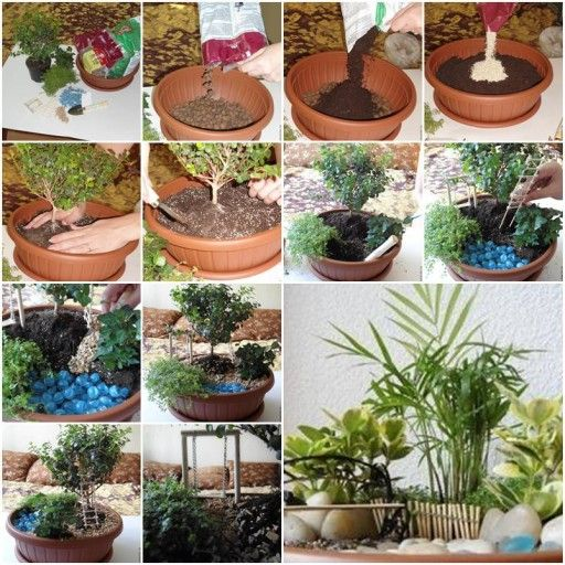 How to make Pot Mini Garden step by step DIY tutorial instructions