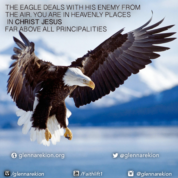 THE EAGLE DEALS WITH HIS ENEMY FROM THE AIR. YOU ARE IN HEAVENLY ...