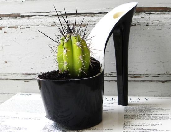 artist Rachel Mahlke gives new life to stylish stilettos by upcycling them into beautiful planters. She first removes the top of the shoe, then sands it, drills holes for drainage, and finally plants it with a variety of plants