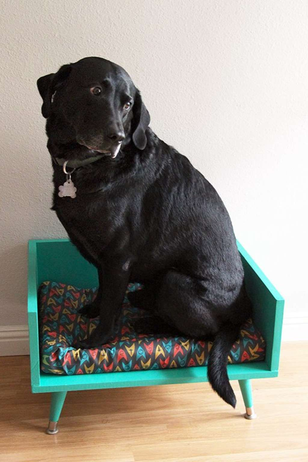 Want a cool, custom pet bed that matches your mid century