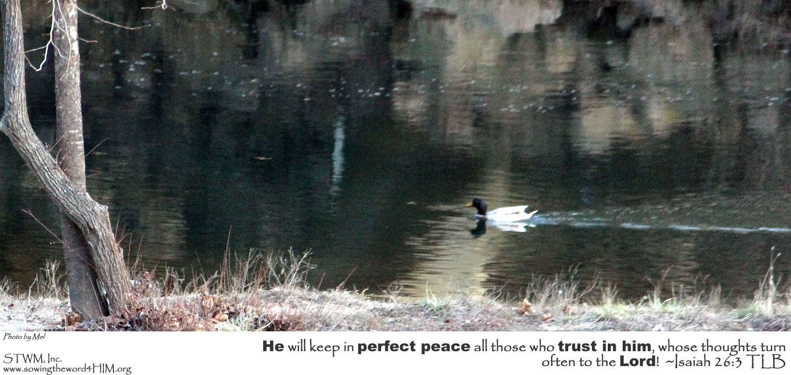 He will keep in perfect peace all those who trust in him, whose thoughts turn often to the Lord!  ~Isaiah 26:3 TLB