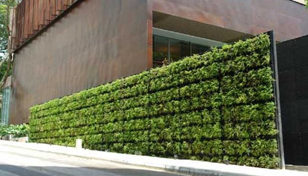Tournesol siteworks vgm modular living wall muros verdes for Modulo jardin vertical