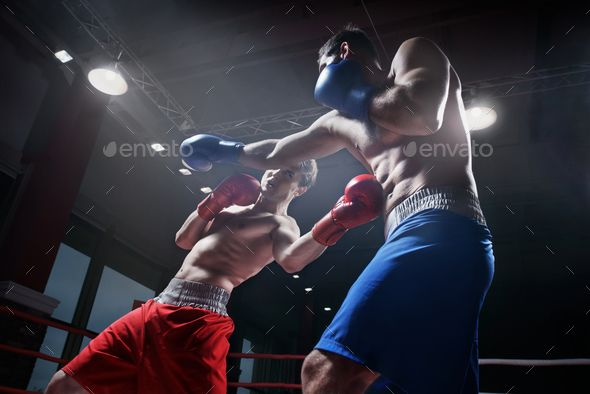Fighting In Boxing Ring By Aboutimages Boxers Fighting In Boxing Ring Ring Boxing Fighting Fighting People Life Photography Boxing Rings
