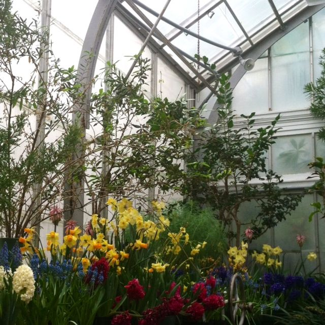 Margaret c ferguson greenhouse my dream garden pinterest counting wellesley college and for Wellesley college botanic gardens