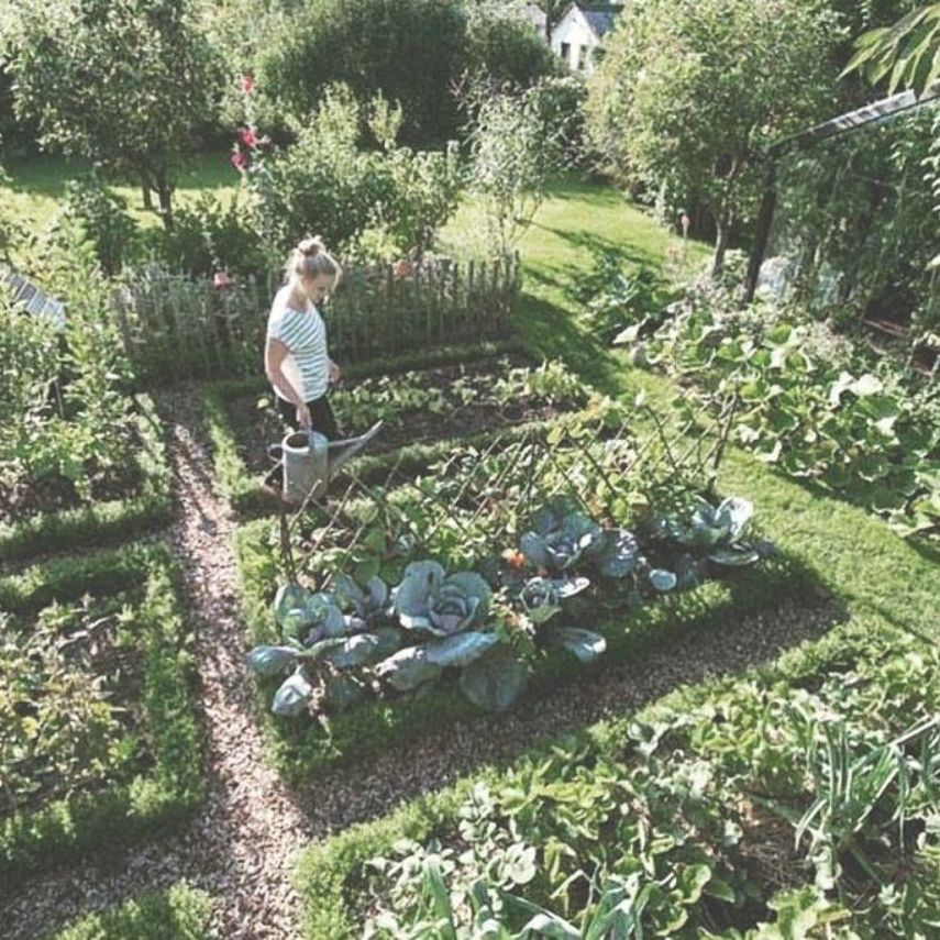 Garden Types This garden really floats my boat ; love everything about it ! Do you agree? #in... #garden #gardentypes #gardening #yard