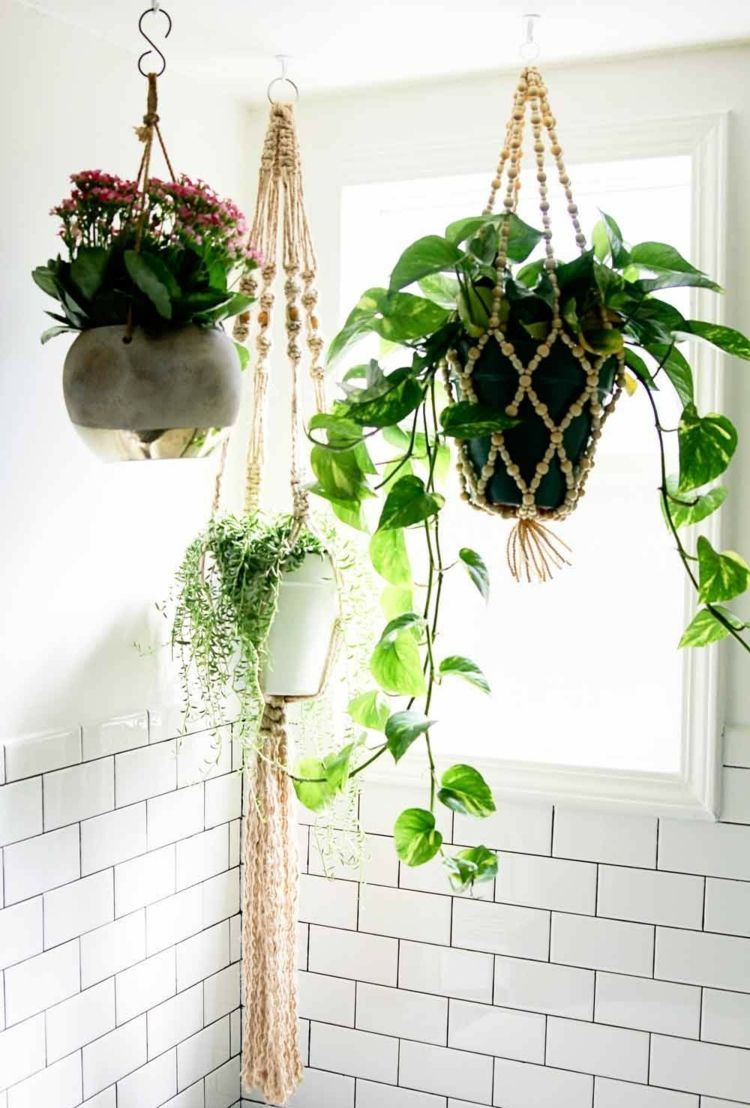 Pflanzen Hängend pflanzen-bad-efeutute-blumenampel-decke-hängend-wandfliesen-weiß