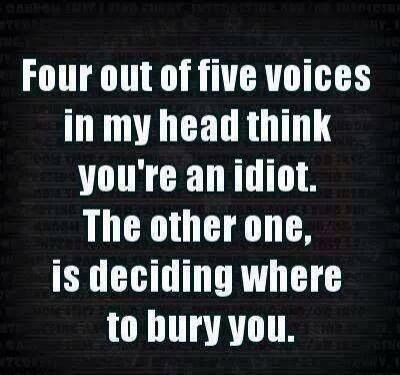 The voices are right... You are an IDIOT!