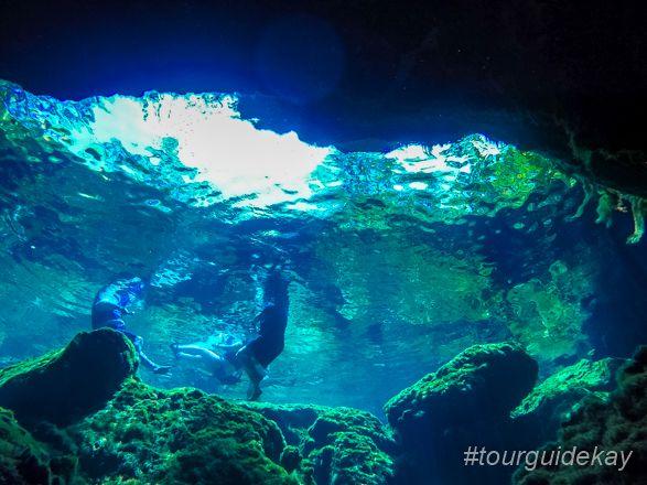 Exploring the Mayan Underworld at Cenote Azul.  #tourguidekay #privatetours #kaytours #cenotes #rivieramaya #playadelcarmen #tulum #cancun #mexico #traveltips