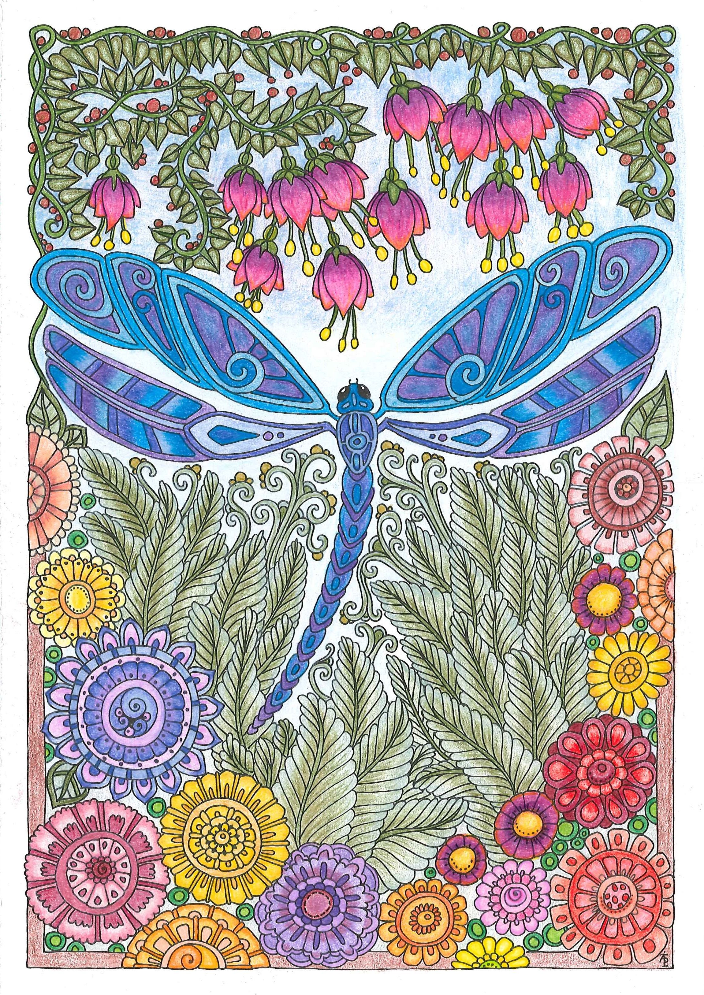 Coloring in dragonflies - Colored With Prismacolor Premier Color Pencils From Creative Haven Entangled Dragonflies