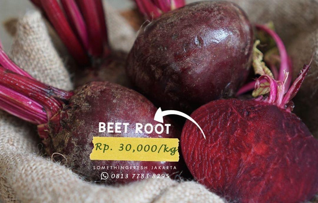 Manfaat Buah Bit Root