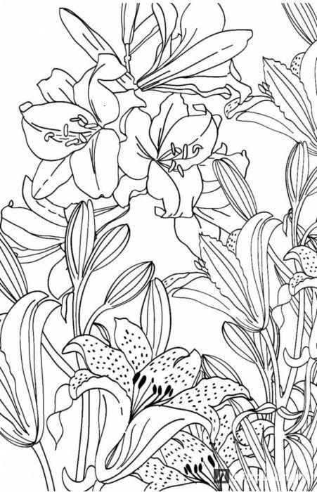 Иллюстрация 6 из 12 для Зачарованный сад. Мини-раскраска ...