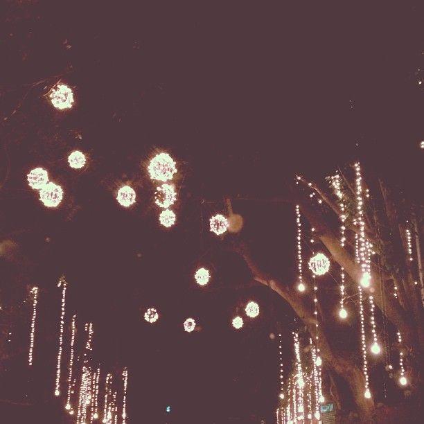 fairy lights on the streets - festive