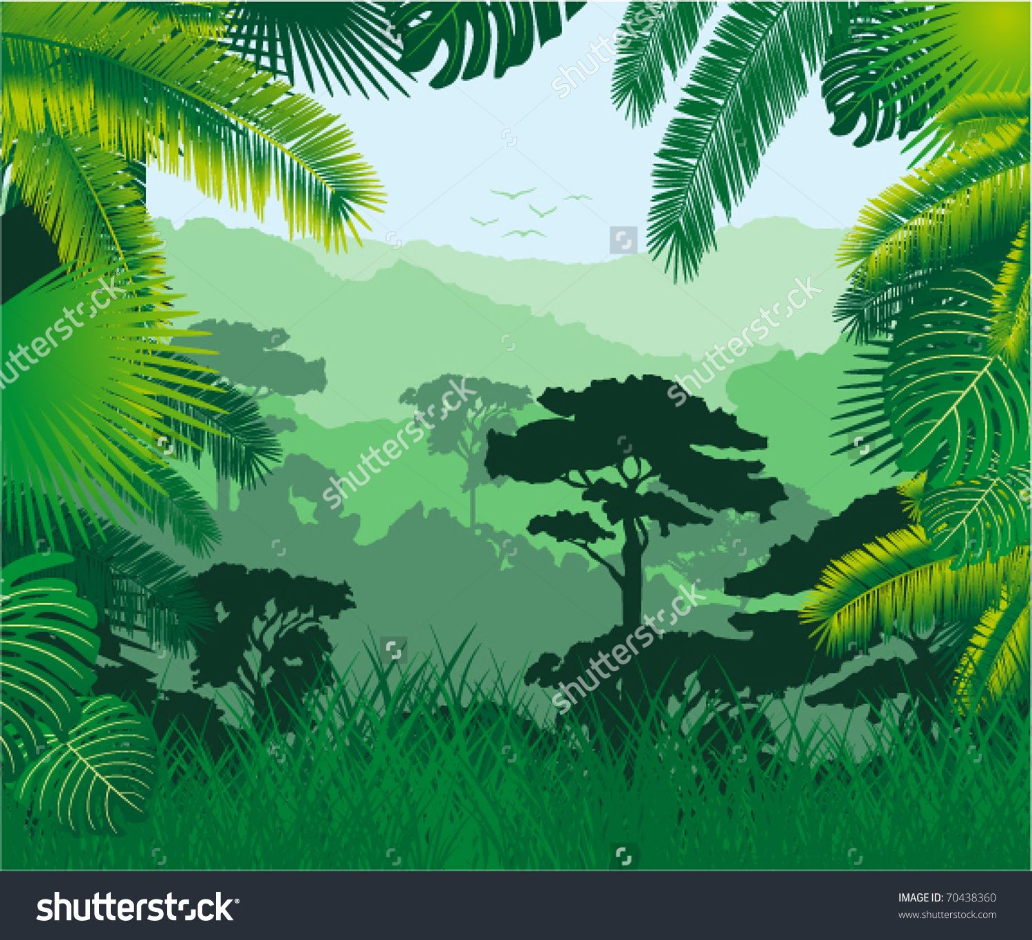 jungle background stock photos images amp pictures