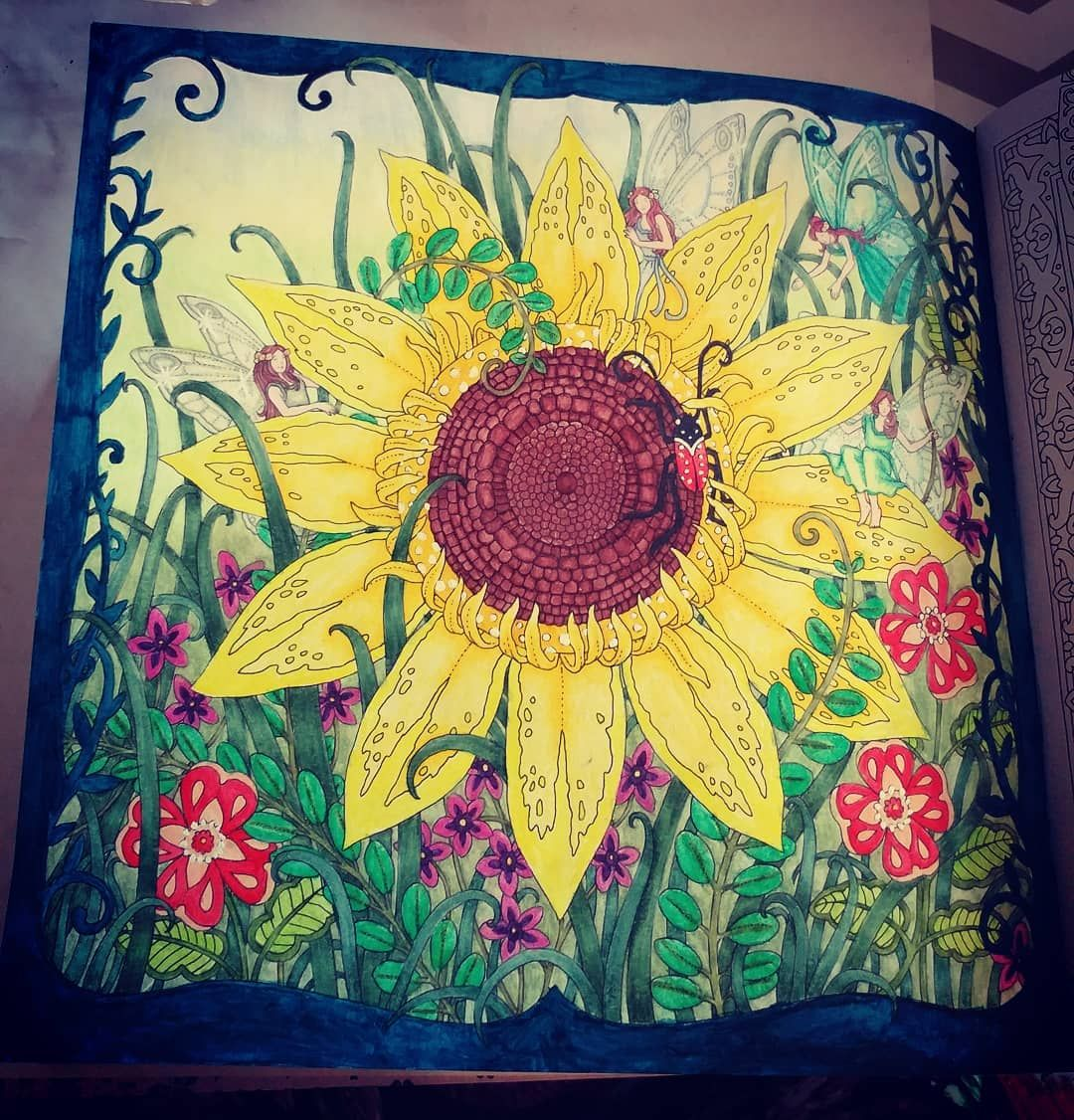 Finsihed This The Other Day My Sunflower Faires