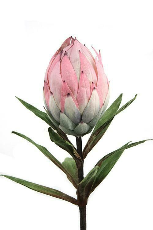 Closed Protea Flower Google Search In 2020 Protea Flower Artificial Flowers Floral Industry