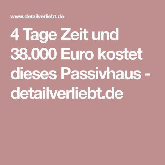 4 Tage Zeit und 38.000 Euro kostet dieses Passivhaus | Container ...