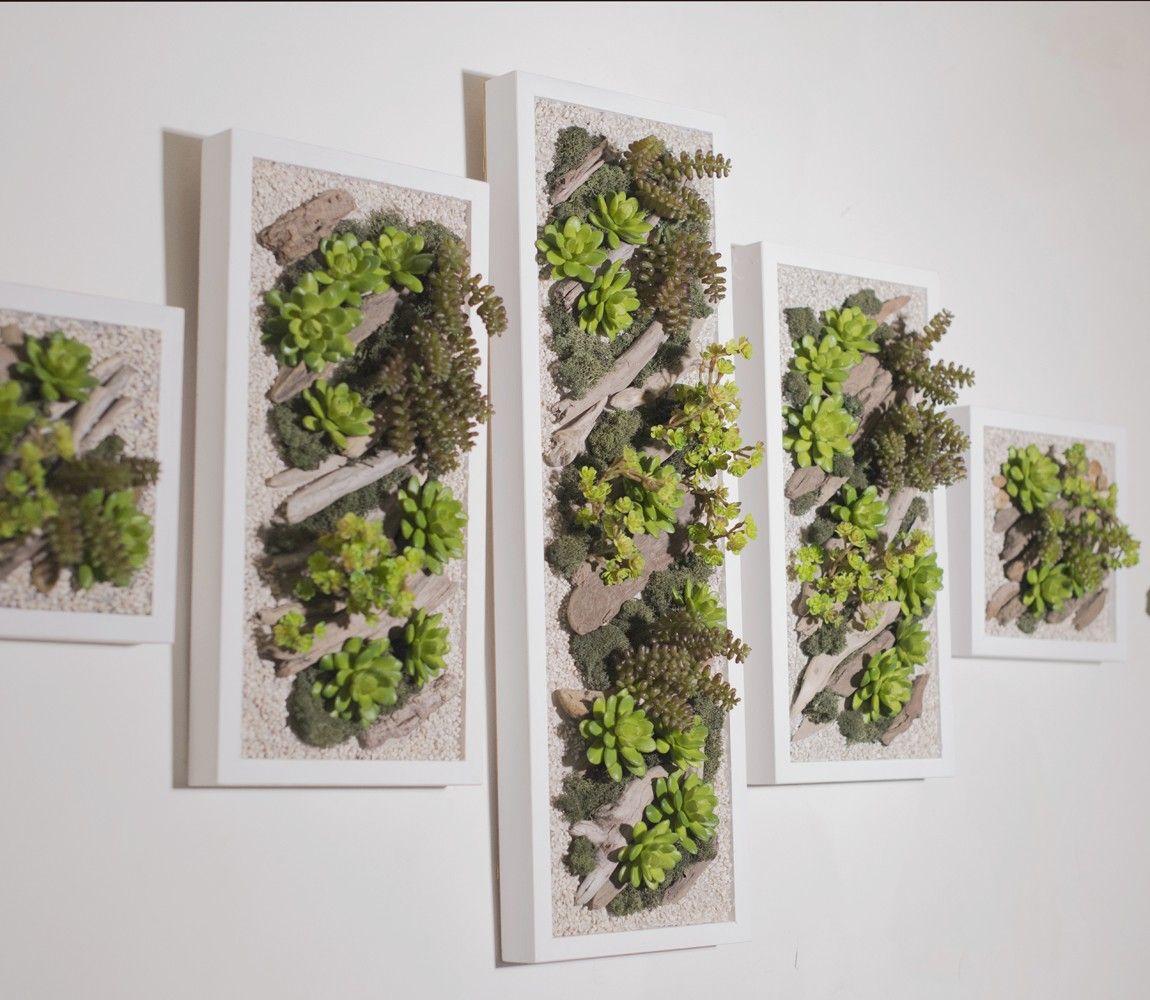 Plantes Pour Tableau Végétal Intérieur comment faire un mur vegetal ? | mur vegetal, cadre végétal