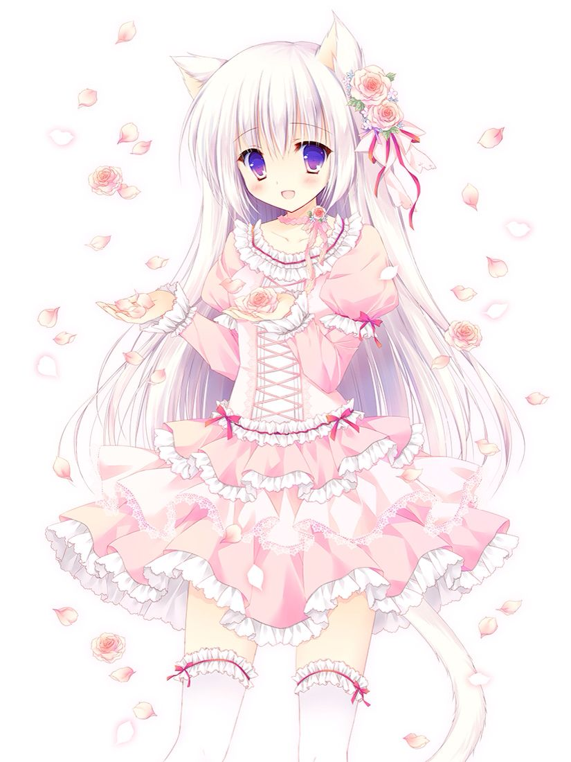 Kawaii Neko Pink Outfit White Knee High Socks Bows