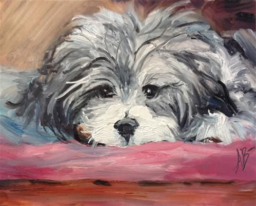 "Daily+Paintworks+-+""Havanese+Sweetheart""+-+Original+Fine+Art+for+Sale+-+©+Annette+Balesteri"