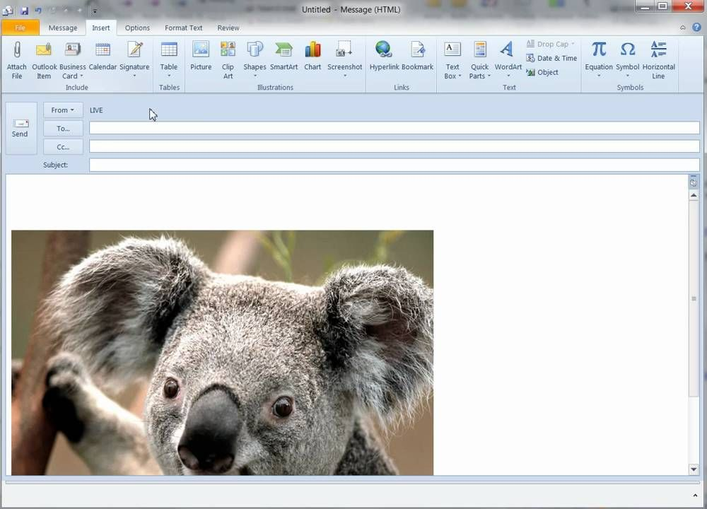 Outlook 2010 Signatures Inserting Image and Resizing
