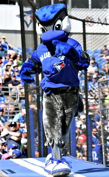 Toronto Blue Jays on Toronto blue jays, Blue, Jay