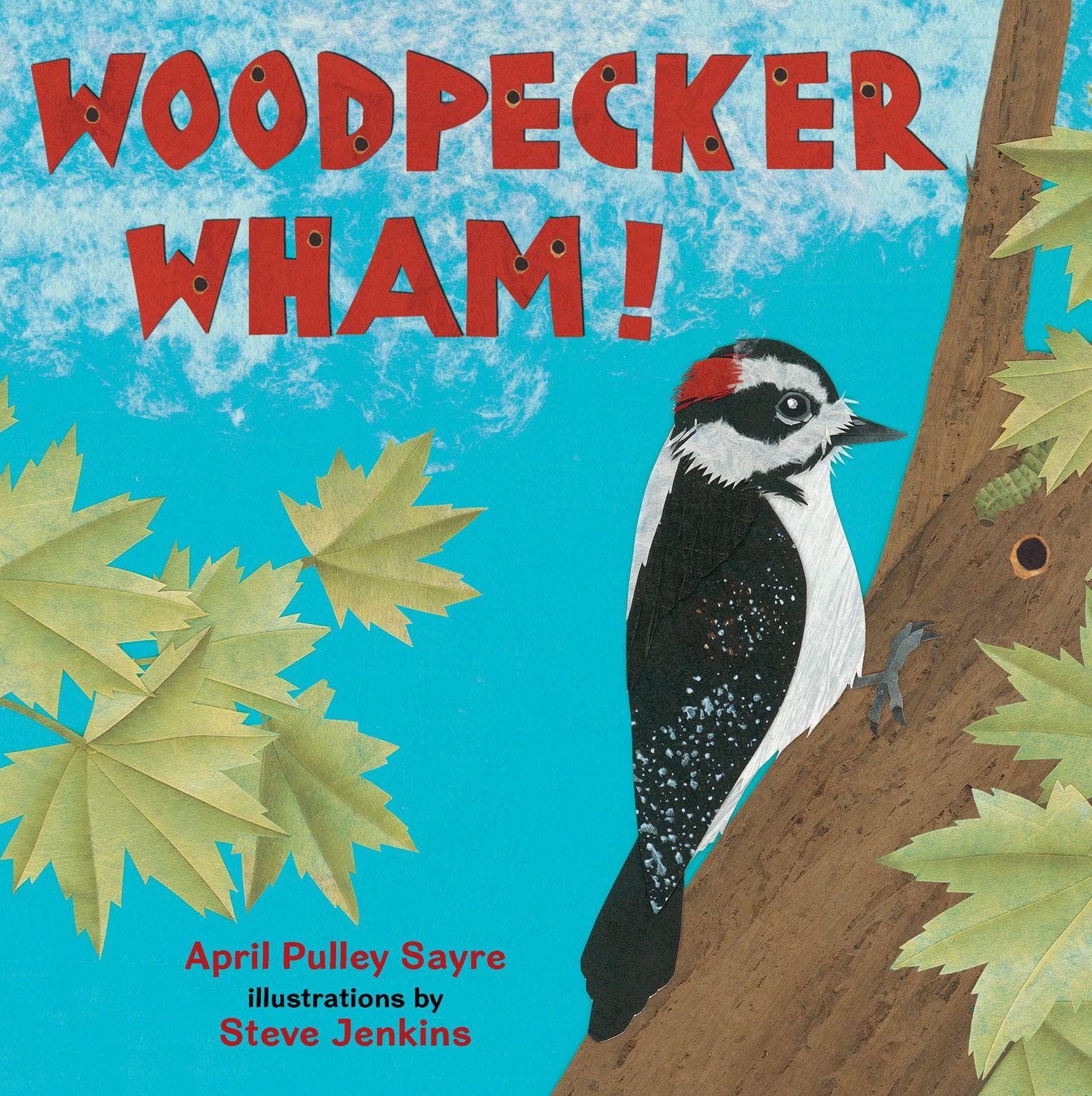 Woodpecker Preschool Books