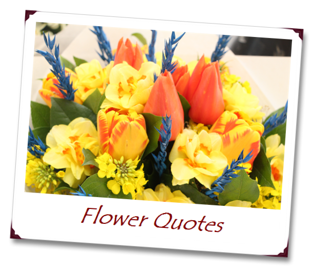 Flower Quotes A Beautiful Bouquet Cannot Blossom Without