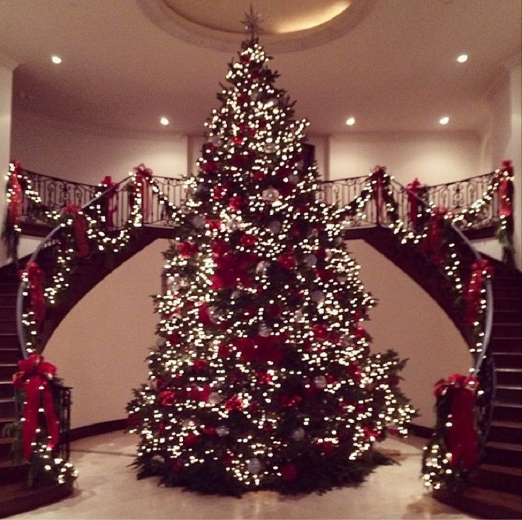 Top 10 Most Adorable Celebrity Christmas Trees Top Inspired Beautiful Christmas Trees Fun Christmas Decorations Beautiful Christmas
