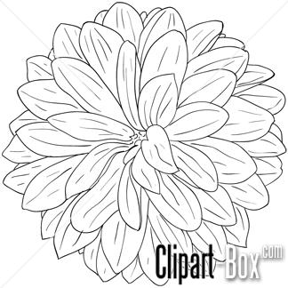 dahlia flower clip art 19 67