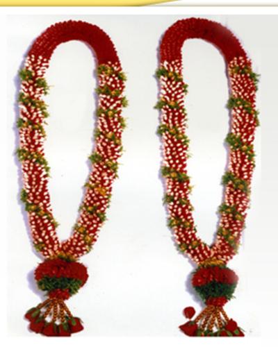 Samphanghi And Rose Petals Wedding Garland Flower Garland Wedding Indian Wedding Garland Rose Petals Wedding