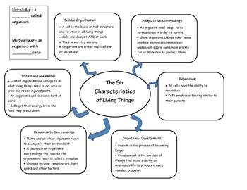 Six Characteristics Of Living Organisms By Sweet Dee S Science Shop Teachers Pay Teachers In 2021 Graphic Organizers Shop Teacher Organization
