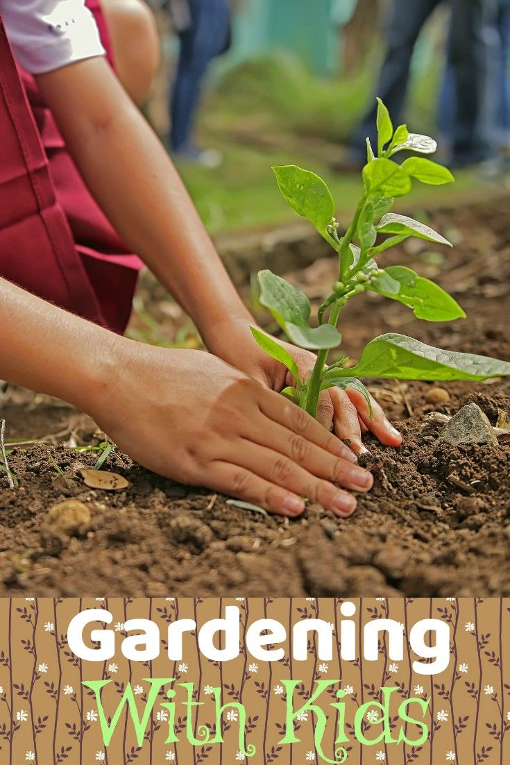 Why You Should Teach Your Kids About Gardening | Pinterest | Gardens ...