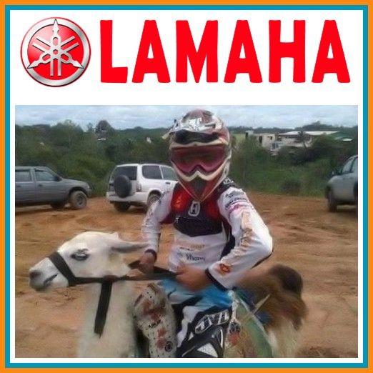 Yamaha Desert Style : Lamaha Motorbike