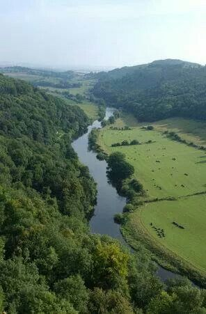 The Forest Of Dean Harry Potter Location Forest Of Dean Harry Potter Locations Dean Harry Potter