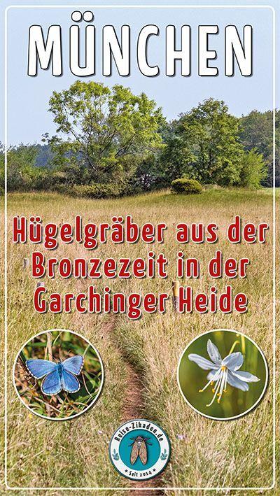 München: Hügelgräber aus der Bronzezeit in der Garchinger Heide