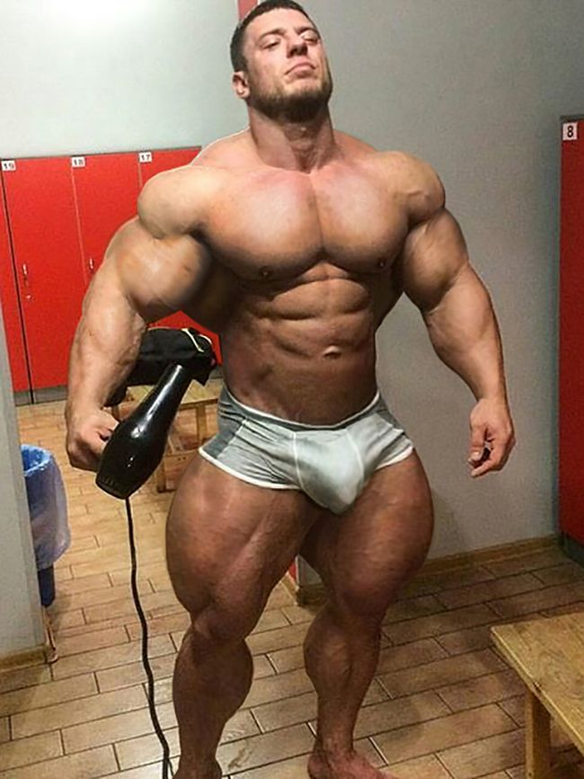 gay escort master bodybuilder escort gay