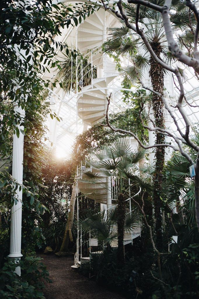 Blog The Curly Head Palmenhaus Vienna Photography By Amelie