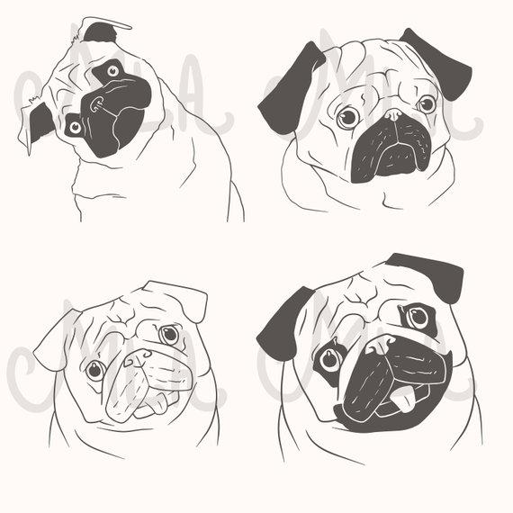 Pug Portrait Pug Black And White Pug Face Digital Clipart For