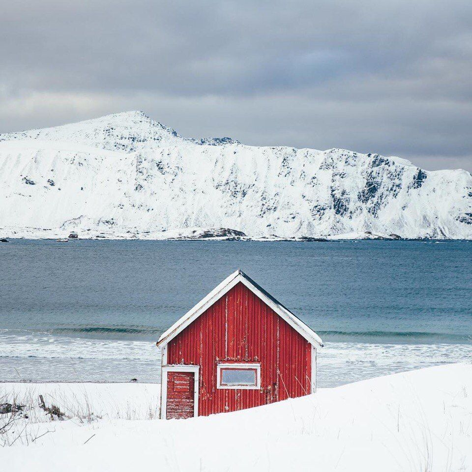 дом для арктики фото образом, игра идет